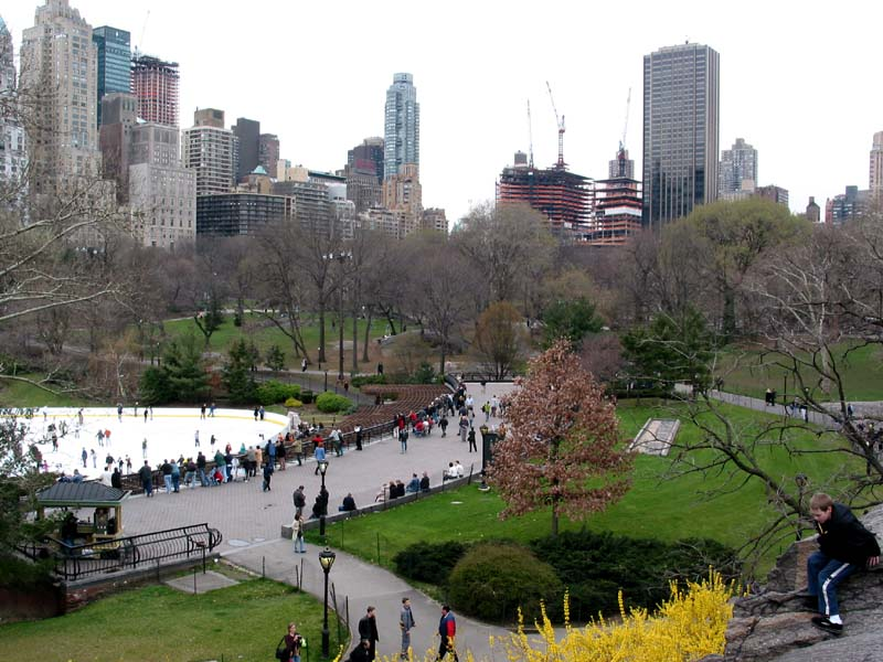 Hotels Near Central Park Zoo